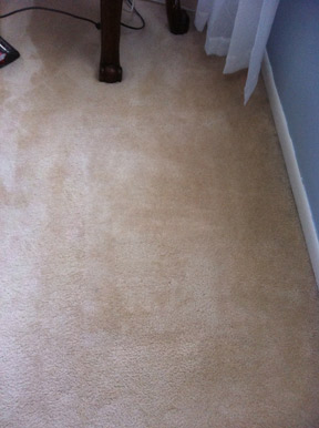 carpet repair NJ